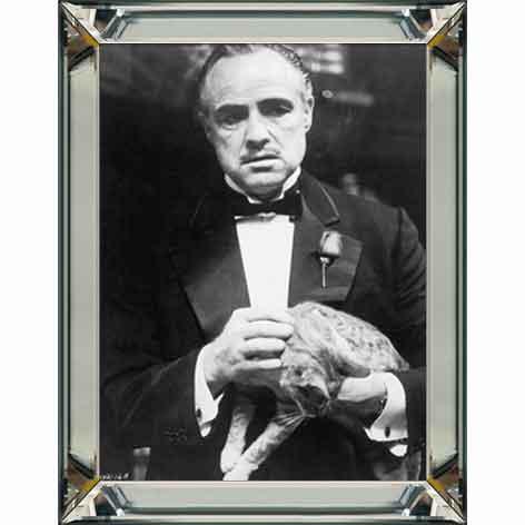 Marlon Brando cat
