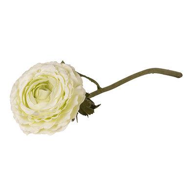 Flower Ethan Creme