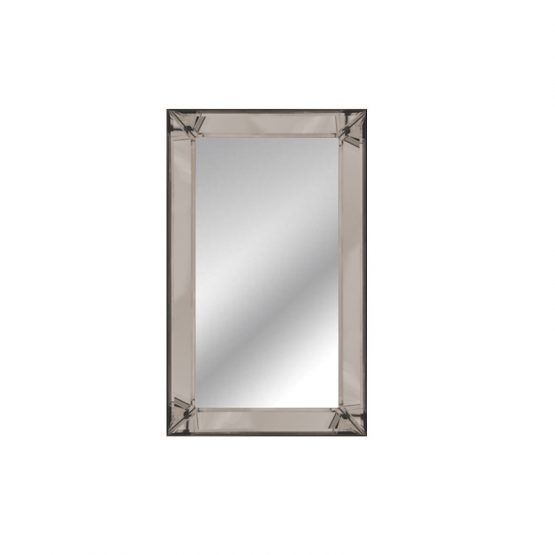 Mirror Lizz 60/120